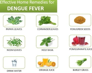 Illustration of Can Dengue Sufferers Be Treated At Home?