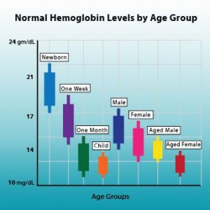 Illustration of The Cause Of The Hb Continues To Decrease?