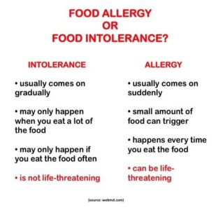 Illustration of The Difference Between Food Intolerance And Food Allergies?