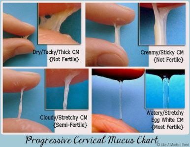 Illustration of Why Does Cervical Mucus Not Come Out During Fertility?