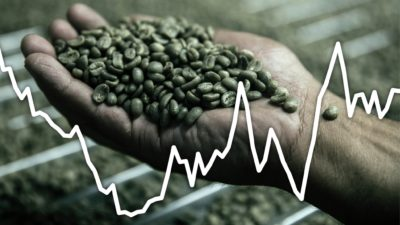 Illustration of Security Of Consumption Of Coffee Beans?