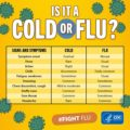 What Is The Difference Between The Common Cold Cough And Covid19 In Children?