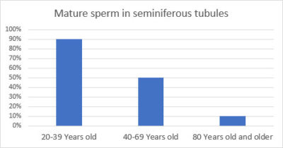 Illustration of Mature Age Of Male Sperm