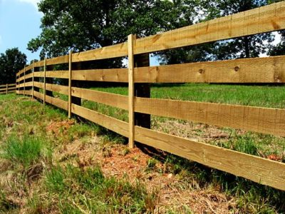 Illustration of Treatment For Treating Cuts On Fences?