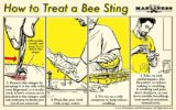 How To Deal With Pain And Swelling When Stung By Bees In Children Aged 22 Months?