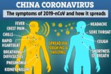 Signs And Symptoms Of Corona