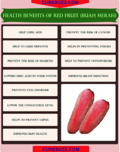 Illustration of Benefits Of Red Fruit From Papua?