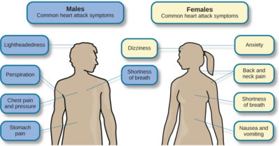 Illustration of What Symptoms Do These Include?