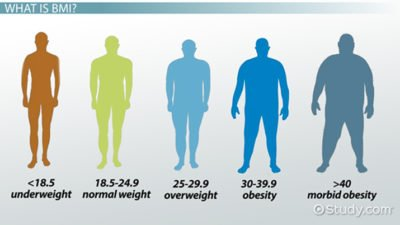 Illustration of What Is The Process Of Raising The Ideal Body Weight