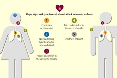 Illustration of Does It Include Symptoms Of Heart Disease?