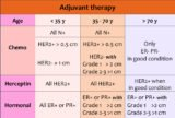 Stage 2 Her2 (+) Breast Cancer Treatment