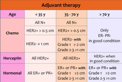 Illustration of Stage 2 Her2 (+) Breast Cancer Treatment