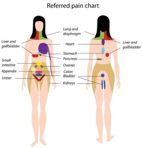 Illustration of Abdominal Pain Up To The Back