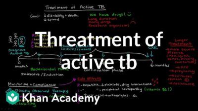 Illustration of What Is The Final Stage Of Treatment For Pulmonary TB?