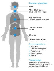 Illustration of Fever, Cough And Pain In The Neck And Arms, What Are The Symptoms Of Corona Virus Infection?