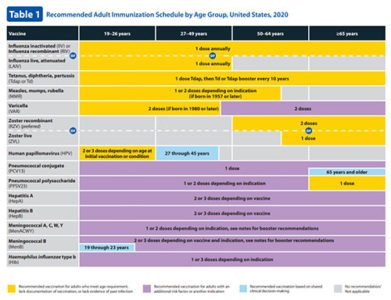 Illustration of Regarding The Administration Of MMR Vaccine In Adulthood