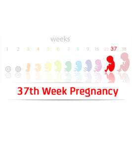 Illustration of Blood Pressure Goes Up And Down While 37 Weeks Pregnant