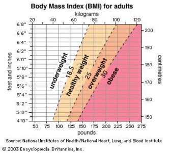 Illustration of What Is The Impact If The Body Mass Index Is Below Or Above Normal?