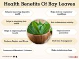 The Use Of Bay Leaves For Medicine