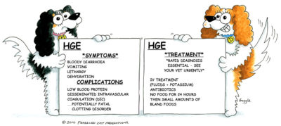 Illustration of Causes Of Hypothermia In People With Gastroenteritis