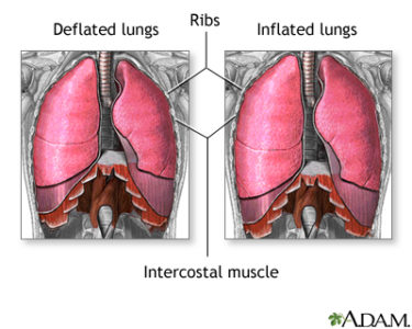 Illustration of Difficulty Breathing While Sleeping?