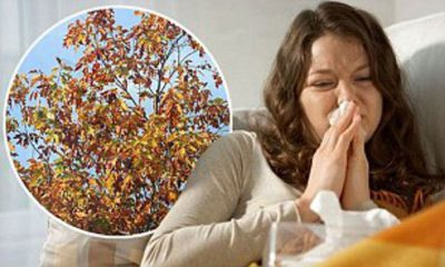 Illustration of Colds After Breathing In Dust, Cold Weather And When Tired?