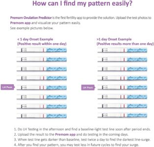 Illustration of Fertility Test Results With A Negative Ovutest Test, Why?