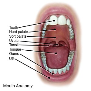 Illustration of How To Deal With Tonsils In Children?