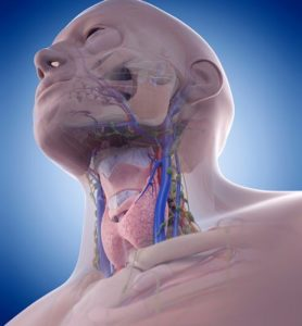 Illustration of Neck Veins Are Tense After The Collar Surgery?