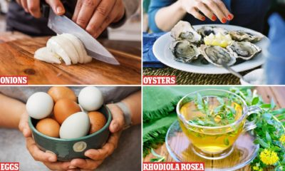 Illustration of Foods That Should Not Be Consumed By Singapore Flu Sufferers?