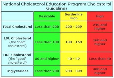 Illustration of Normal Cholesterol Levels In The Body?
