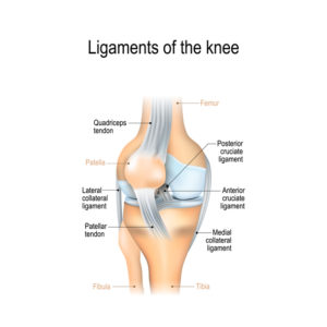 Illustration of Does The Knee Hurt Due To Impact?