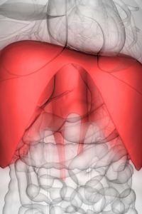 Illustration of Upper Abdominal Pain When Coughing And Yawning?