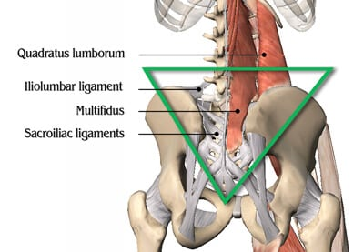 Illustration of Treatment When Suffering From Paralumbal Muscle Spasm?