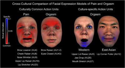 Illustration of Red Face And Pnas?