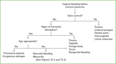 Illustration of Bleeding In The Vagina At A Young Gestational Age?