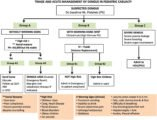Management Of Fever And Vomiting After DHF In Children?
