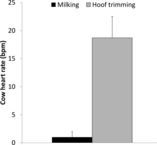 Illustration of Can Milk Consumption Change The Shrill Sound?