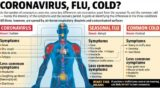 Fever With The Condition Of The Body Inside The Cold And Hot Outside?