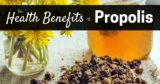Can Sufferers Of Stomach Acid Consume Propolis?