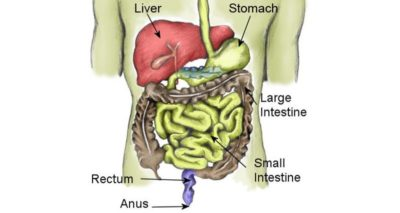 Illustration of Stomach Ache After Heavy Activity?