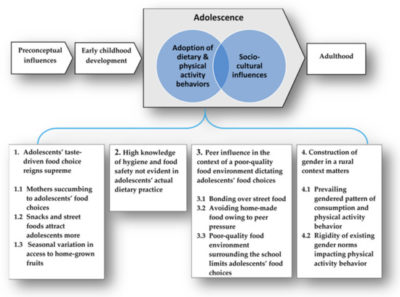 Illustration of Consumption Of Additional Food For Pregnant Women In Adolescents 15 Years Who Are Not Currently Pregnant?