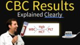 Explanation Of Blood Cell Examination Results?