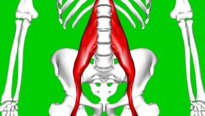 Illustration of The Cause Of The Hips Down Feels Weak?