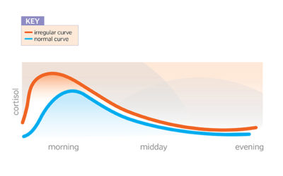 Illustration of Does My Cortisol Increase When Stress Is Over?