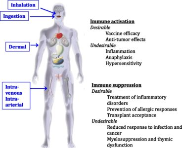 Illustration of Side Effects If The Immune System Is Weak / Decreased?