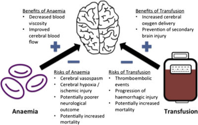 Illustration of Provision Of Blood Transfusions In Anemic Patients?