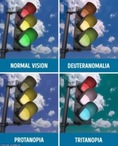 Illustration of How To Find Out The Type Of Color Blindness Experienced?