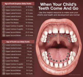 Illustration of Right Upper Molars Cavities And Teething In The Middle Of The Hole?