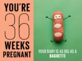 Can The Fetus Gain Weight At 36 Weeks' Gestation?